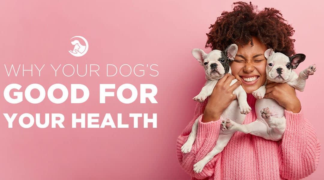 Health Benefits of Having a Dog
