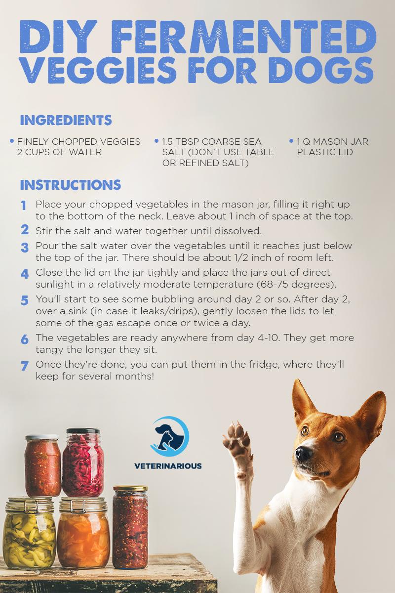 fermented vegetables for dogs